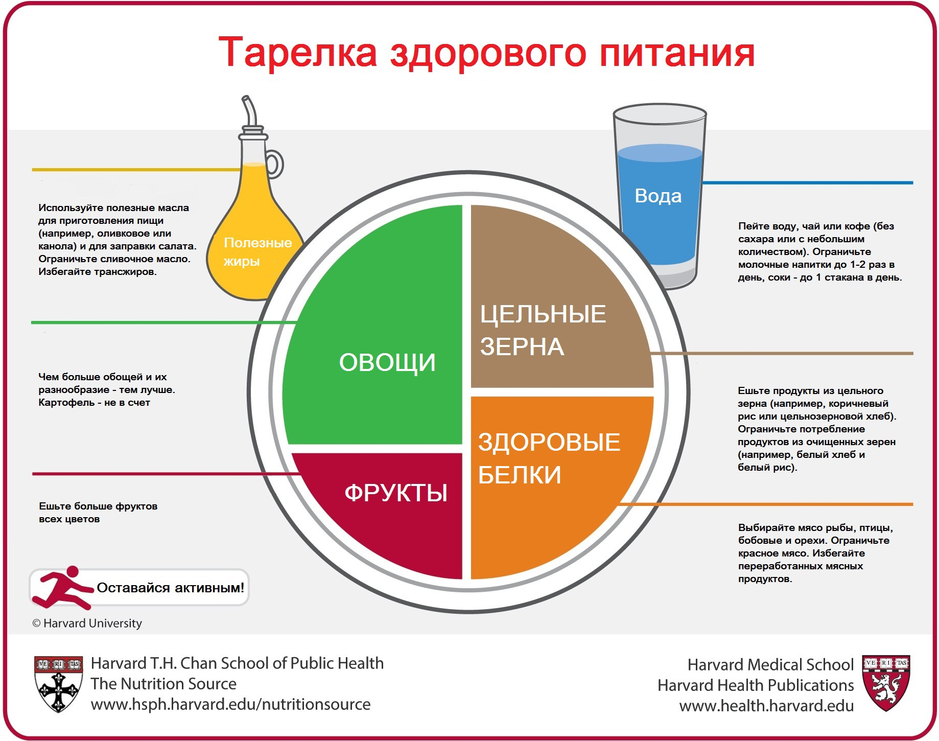 Image 13 Гарвардская тарелка и anti age диета