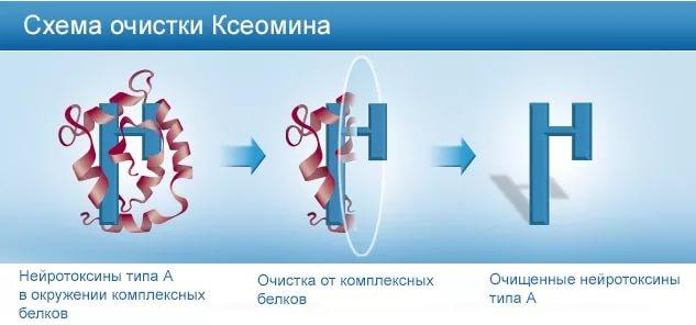 xeomin Привыкаемость к Ботоксу: выбираем другой препарат или альтернативные методы устранения морщин